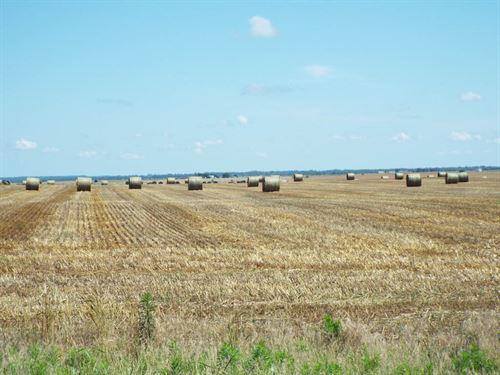 160 Acres Cropland : Nash : Grant County : Oklahoma