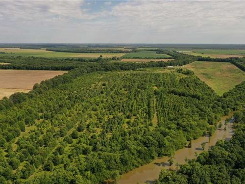 81 Acres Between Humphrey, Stu : Humphrey : Arkansas County : Arkansas