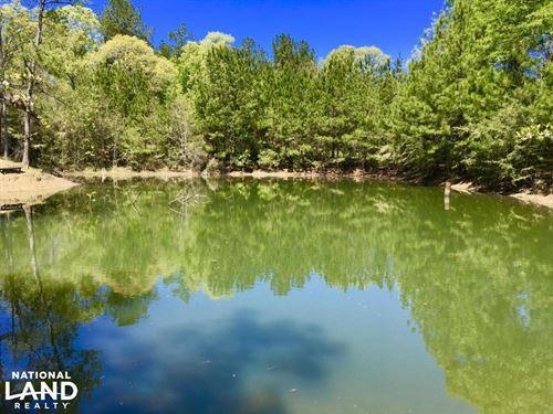 Okwakee Creek Camp And Pond Tract : Deer Park : Washington County : Alabama