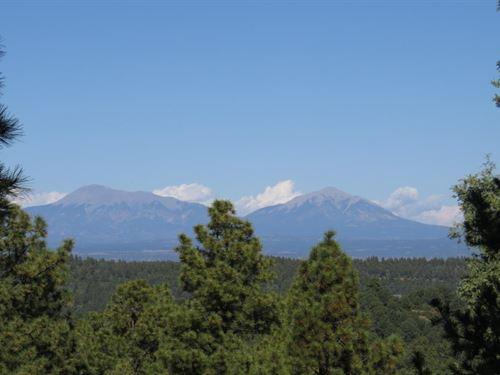 E6 Santa Fe Trail Ranch : Trinidad : Las Animas County : Colorado
