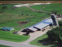 Nice Free Stall Barn Milking : Orleans : Jefferson County : New York