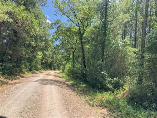34 Acres Lost Indian Camp Road : Huntsville : Walker County : Texas