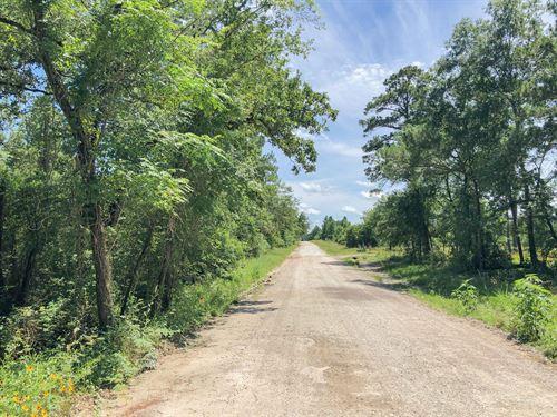 524 Acres Hopewell Road : Huntsville : Walker County : Texas