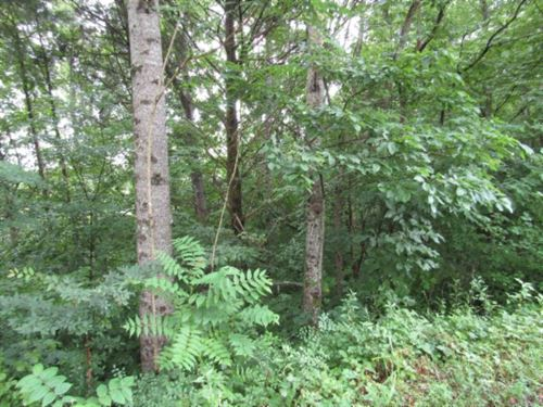 105.99 Ac Totally Wooded, Creek : Sparta : White County : Tennessee