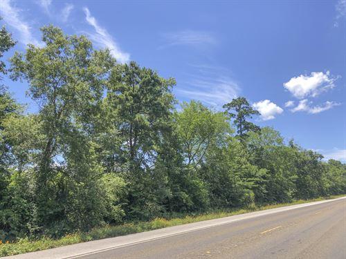 138 Acres Menard Creek West : Cleveland : Liberty County : Texas