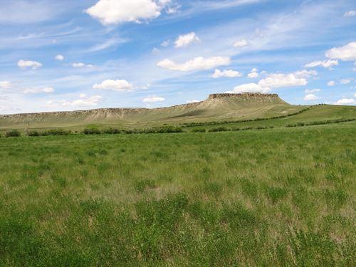 Northern Montana Farm Land Auction : Kevin : Toole County : Montana