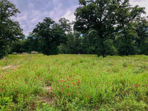 Nice 16.129 Acres : Rockdale : Milam County : Texas