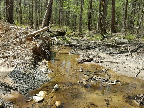 Hackney Creek Headwaters : Goodwater : Tallapoosa County : Alabama