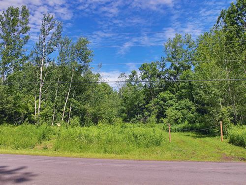 Subdivision Approved, 26 Lots : Hannibal : Oswego County : New York