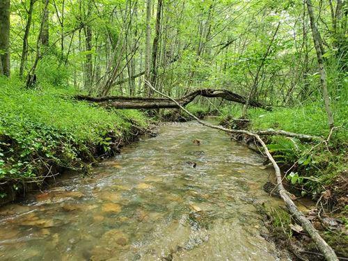87.3 Acres in Laurel Springs : Laurel Springs : Wilkes County : North Carolina