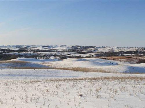 160 Acres Cropland, Alfalfa : Verdel : Knox County : Nebraska