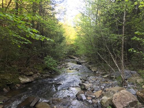227.84+/-Acres Beautiful Wooded Mtn : Dayton : Rhea County : Tennessee