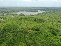 Wooded Acreage : Anderson : Anderson County : South Carolina