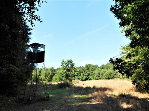 Beautiful 163 Acre Hunting Tract : Paxville : Clarendon County : South Carolina