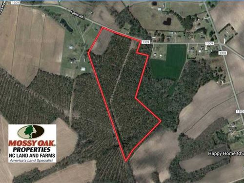 39 Acres of Farm And Timber Land : Tyner : Chowan County : North Carolina