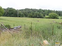 74 Acres, Ready to be Your New fa : Bonnieville : Hart County : Kentucky