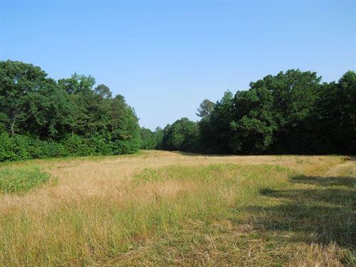 Fantastic Hunting Property : Littleton : Halifax County : North Carolina