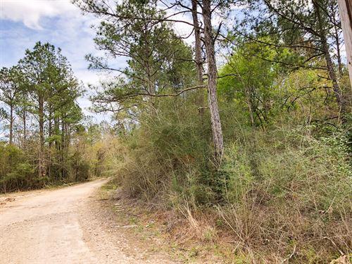 9 Acres Cr 3132 : Orange : Newton County : Texas