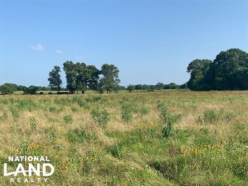 22.7 ac Pasture, Building Site : Eustace : Henderson County : Texas
