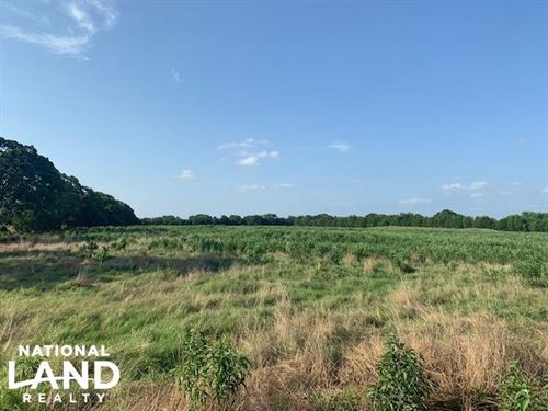 23.8 ac Pasture, Nice Pond, Great : Eustace : Henderson County : Texas