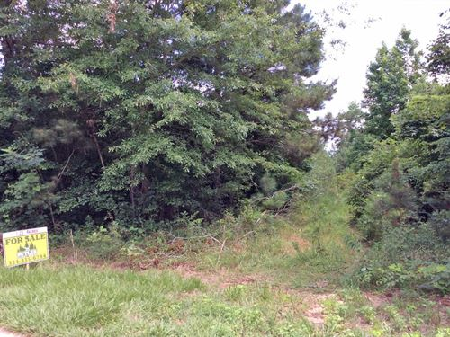 McKenzie Grade Road Tract : McKenzie : Butler County : Alabama