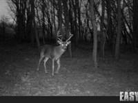 Hunting Cabin & Acreage : Nash : Grant County : Oklahoma