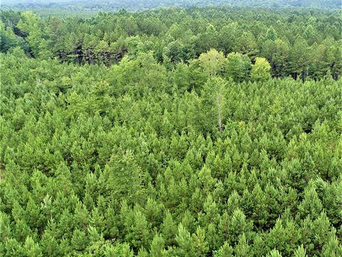 Loblolly Plantation Of Upson : Culloden : Upson County : Georgia