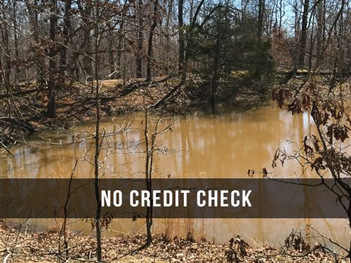 $500 Down On 10 Acre Hunting Land : Mountain View : Howell County : Missouri