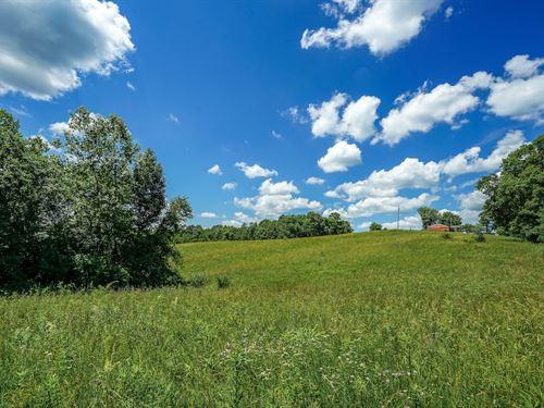 Locust Grove Rd, 147 Acres : McArthur : Vinton County : Ohio