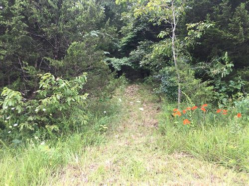 Land 5 Acres Deer Turkey Woods : Pocahontas : Randolph County : Arkansas