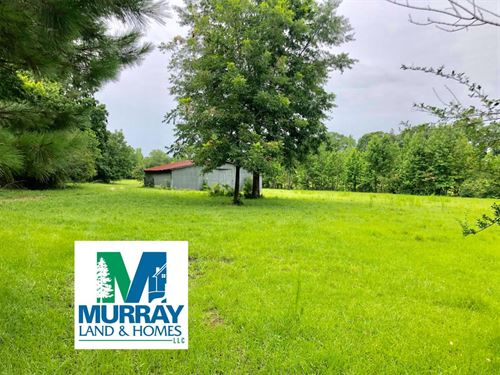 Beautiful, Prime Pasture Land : Liberty : Amite County : Mississippi