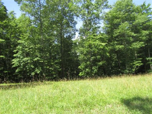 5+Ac W/Mtn Views In A Secluded Area : Hilham : Clay County : Tennessee