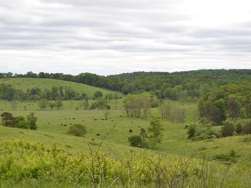 Missouri Ozarks Ranch For Sale : Fremont : Carter County : Missouri
