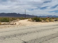 Beautiful Res/Farm Land, $395/Mo : Desert Center : Riverside County : California