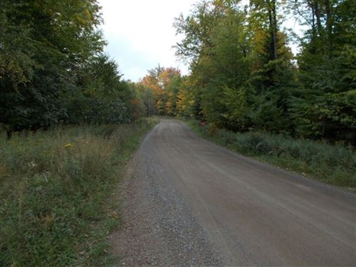 Fence River Road East : Michigamme : Baraga County : Michigan