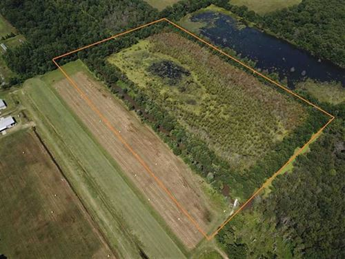 26 Acre Duck Hole & Homesite : Lonoke : Arkansas