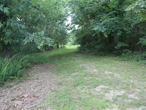 11 Acres Electric, Septic, Well : Thayer : Oregon County : Missouri