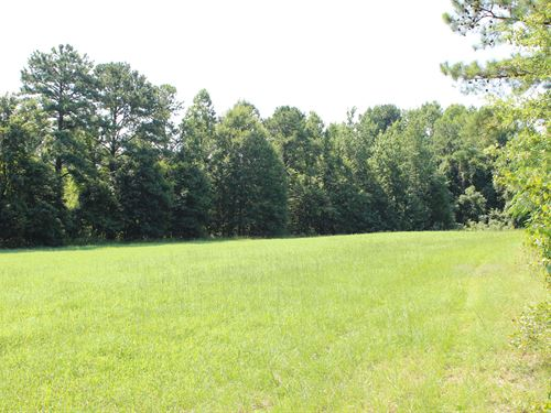 Top Notch Hunting Land : Selma : Dallas County : Alabama