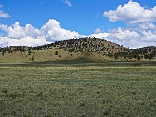 Cheap Open Lot With Views : Hartsel : Park County : Colorado