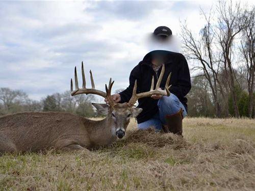 Sandy Creek Hunting Ranch : Streetman : Freestone County : Texas