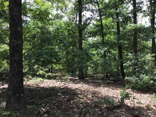 82 Acres Recreational Farm, Gre : Roach : Camden County : Missouri