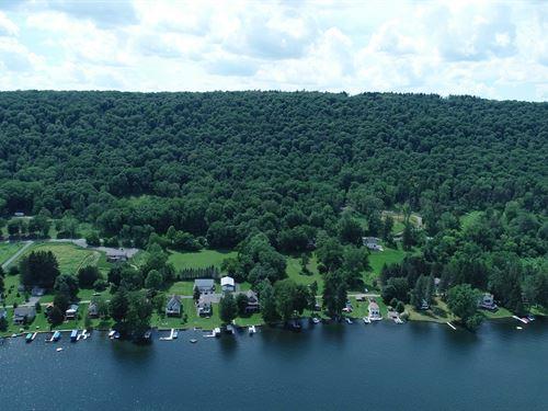 Cazenovia Lake Building Lot : De Ruyter : Onondaga County : New York