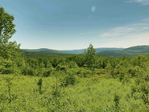Catskills Mixed Woods And Meadows : Andes : Delaware County : New York