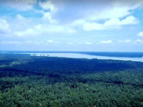 Eagle's Nest On Lake Livingston : Point Blank : San Jacinto County : Texas