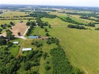 Cattle Ranch in Willard, Missouri : Willard : Greene County : Missouri