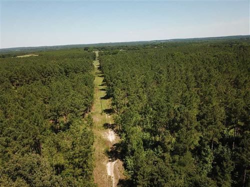 Beautiful Tract of 75 Acres Near : Texasville : Barbour County : Alabama