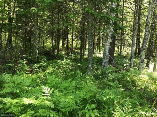 Wooded Acreage Nemadji, Hunt : Holyoke : Carlton County : Minnesota