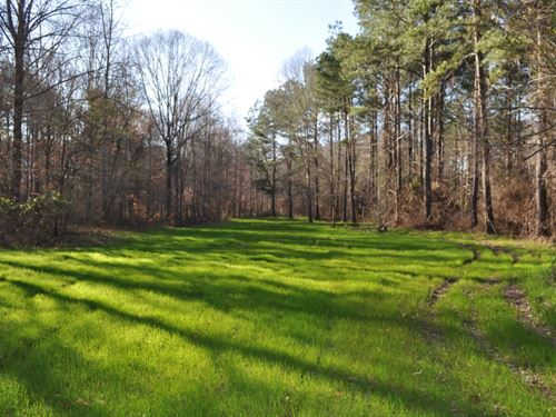 270 Acres, Hale County, Sawyerville : Sawyerville : Hale County : Alabama