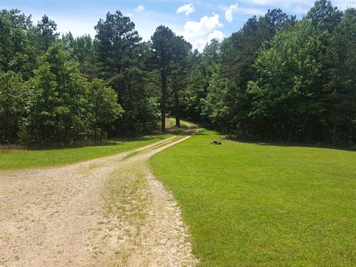 Missouri Acreage, 2 Homes, Wooded : Willow Springs : Howell County : Missouri