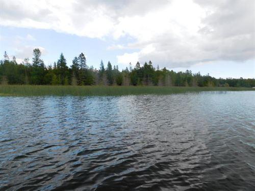 Drummond Island, Land & Water : Drummond Island : Chippewa County : Michigan